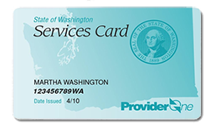 Provider One Card